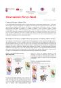 Immagine Osservatorio prezzi flash N.19.pdf