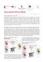 Immagine Osservatorio prezzi flash N.21.pdf