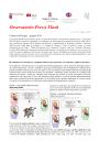 Immagine Osservatorio prezzi flash N.23.pdf