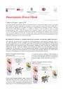 Immagine Osservatorio prezzi flash N.25.pdf
