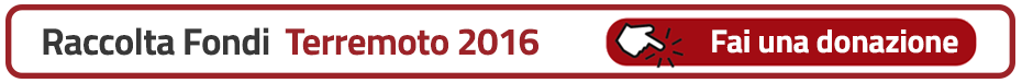 Banner Raccolta fondi Terremoto 2016